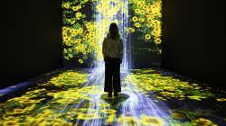 In digitale Welten eintauchen: Panasonic präsentiert neueste AV-Technologien auf der ISE 2020
