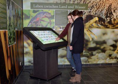 Museumstechnik / VST
